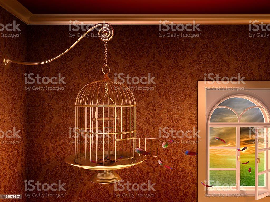Empty birdcage stock photo