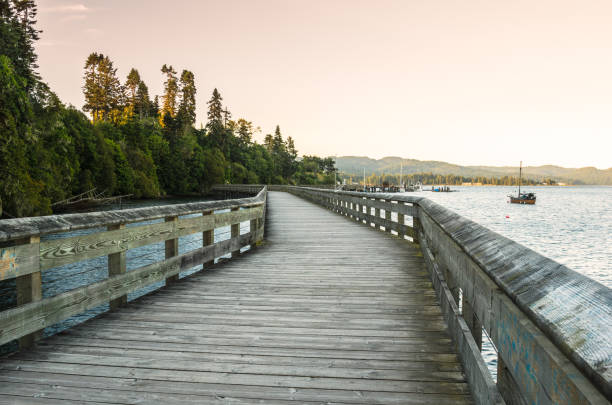 Leere Promenade entlang einer bewaldeten Bucht – Foto