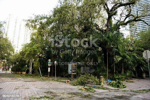 Miami, Florida- September 11, 2017. Brickell streets are empty and have storm debris the morning after hurricane Irma passed through South Florida
