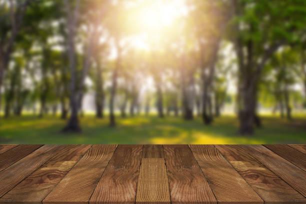 Leere braune Holztisch und verschwommen Wald im Hintergrund. – Foto
