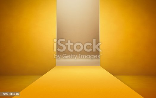 istock Empty catwalk background for fashion shots 839193740