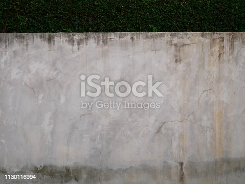 Fence, Built Structure, Wall - Building Feature, Concrete, Leaf