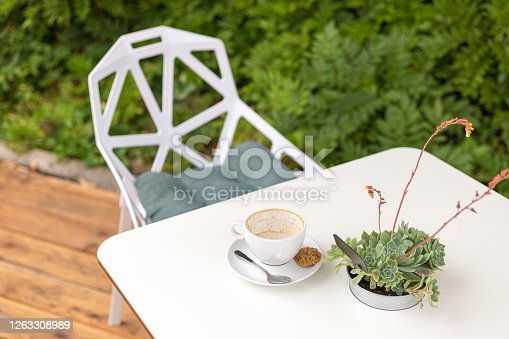 Empty coffee cup on a White Background. Terrace with a table in a cafe, Potted succulents outdoors, morning time
