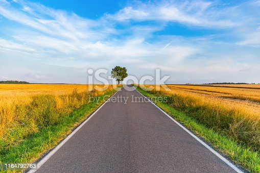 1155573645istockphoto Empty countryside road at sunset. Czech rural landscape. 1164792763