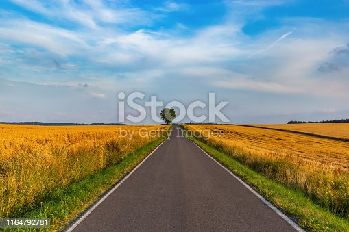 1155573645istockphoto Empty countryside road at sunset. Czech rural landscape. 1164792781