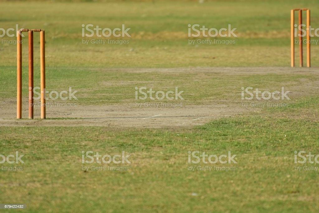 Empty cricket pitch royalty-free stock photo