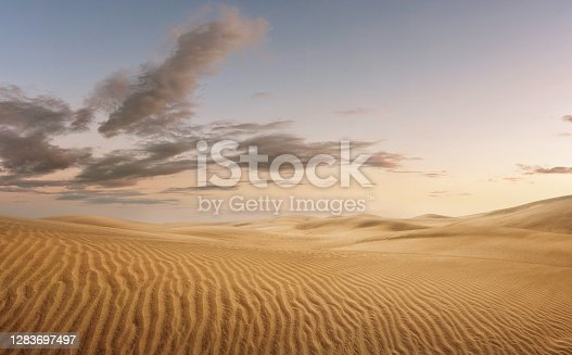 Empty desert at the sunset, nature background with copy space