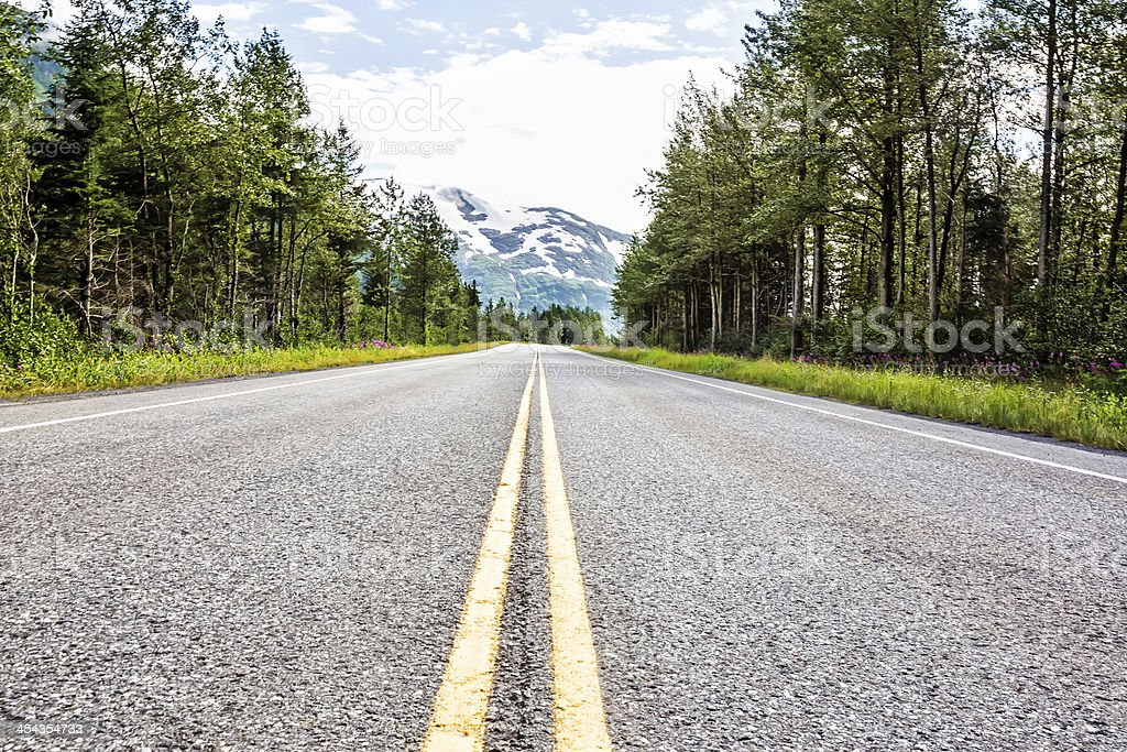 Empty divided highway surrounded by forest stock photo