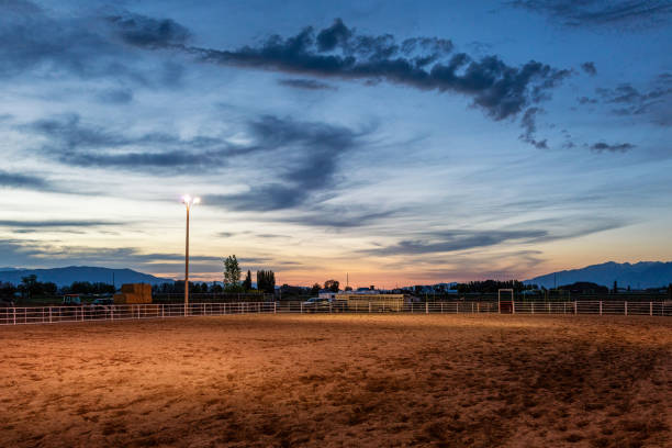 empty equestrian arena at sunset - rodeo stock pictures, royalty-free photos & images