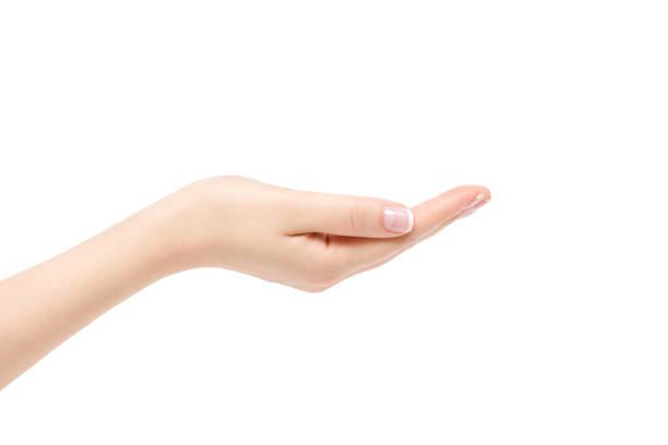 empty female hand on white background. - palmo foto e immagini stock