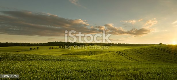 istock Empty field at the sunset 689762756