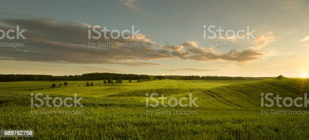 Photo of Empty field at the sunset