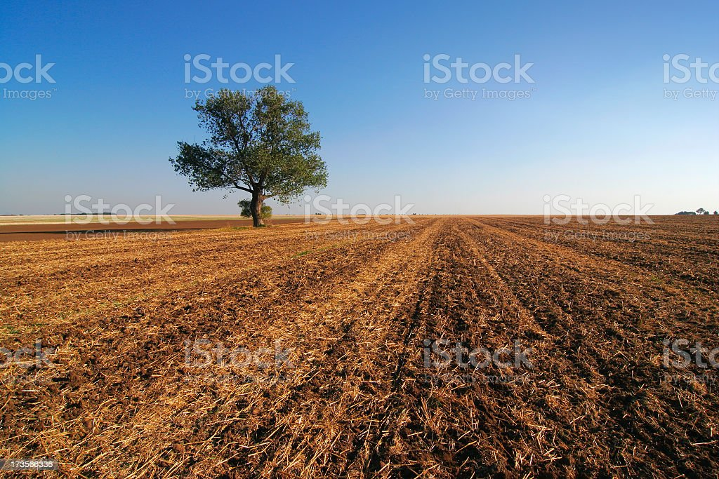 Empty Fields III royalty-free stock photo