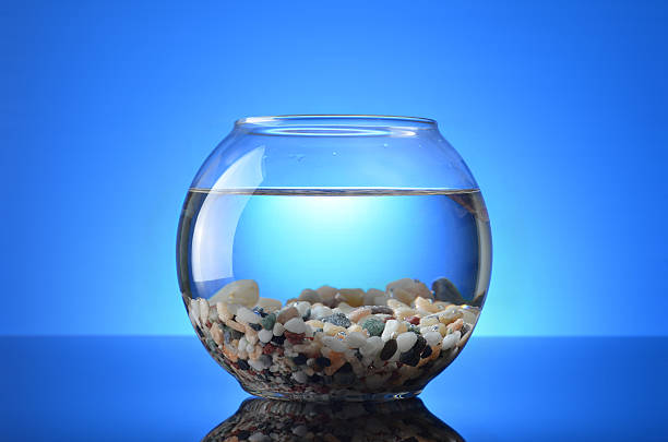 Empty Fish Tank stock photo