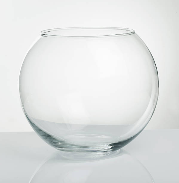 Royalty free fish bowl pictures images and stock photos for Fish bowl pictures