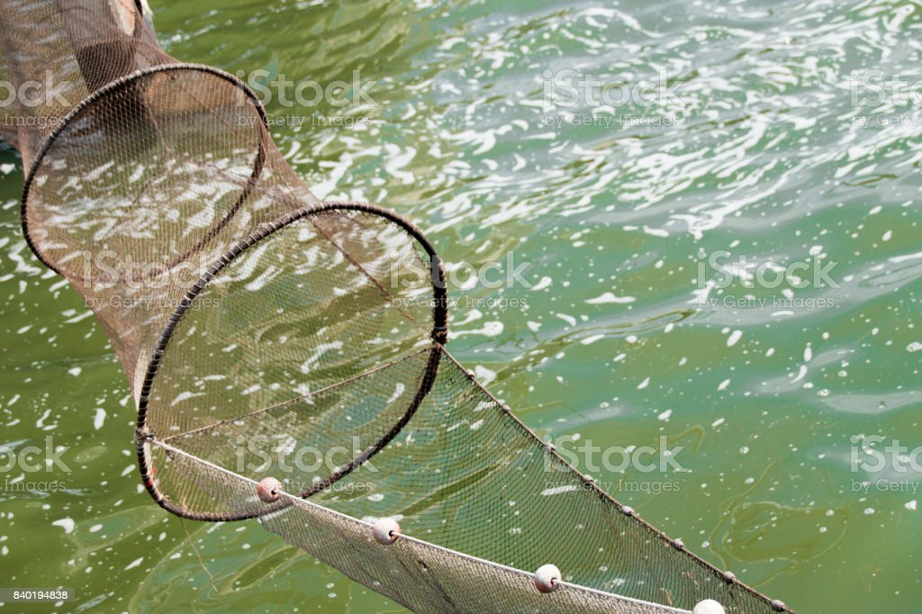 empty fishing nets above green water with reflections of the sun stock photo