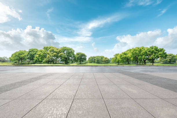 Empty floor and green forest natural landscape stock photo