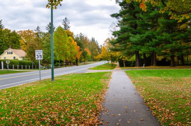 Leerer Fußweg durch einen mit herabgefallenen Blättern bedeckten Rasen – Foto