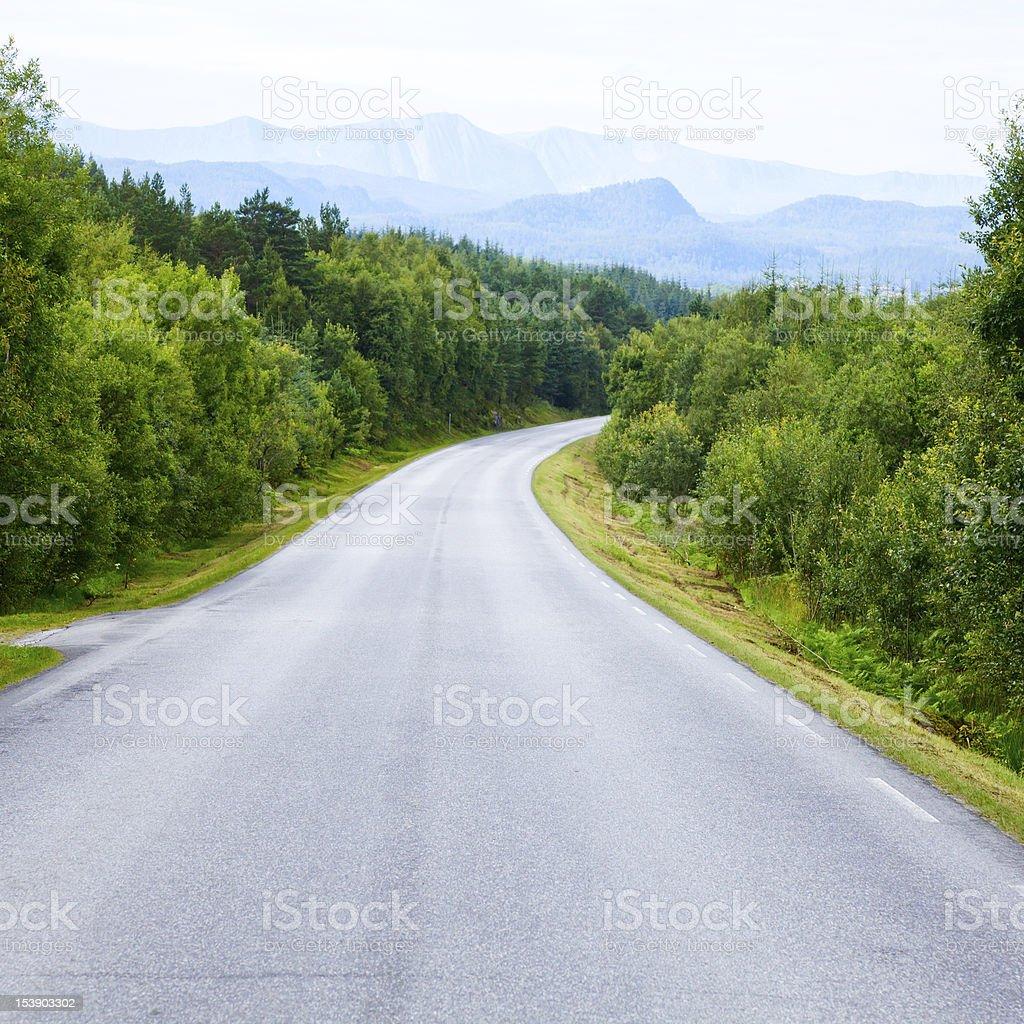 Foto De Vazia Forest Road E Mais Fotos De Stock De Bosque Floresta Istock
