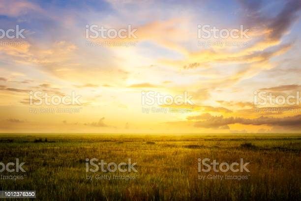 Empty grassland and sky at evening time