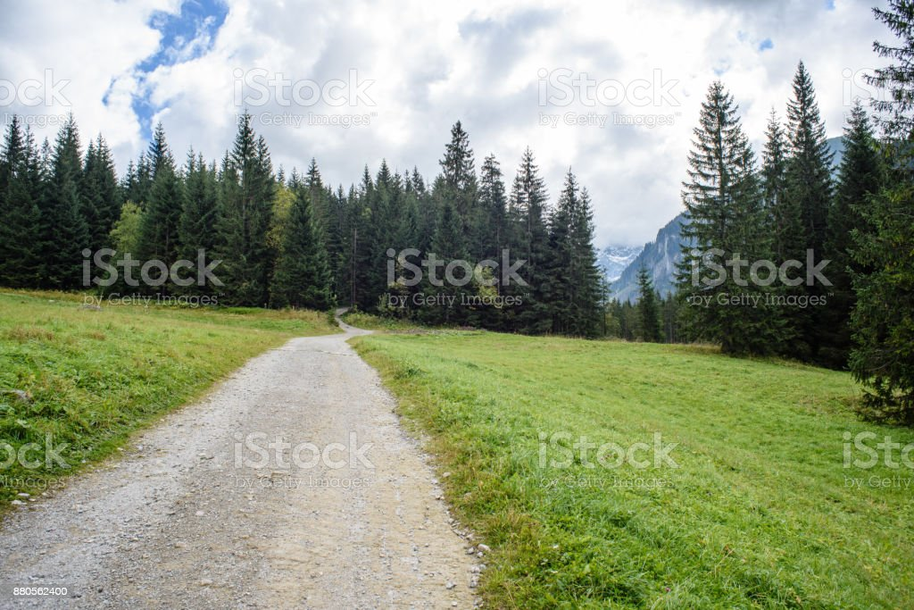 empty gravel road in the countryside in summer stock photo