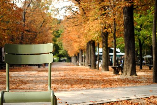 Empty green metal chair in park