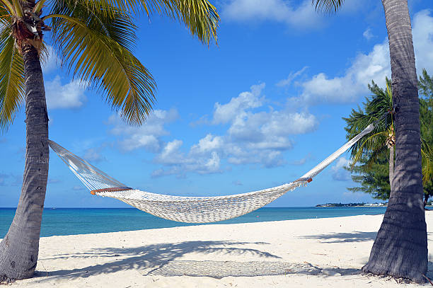 Empty hammock on a white sand beach, by clear blue waters stock photo