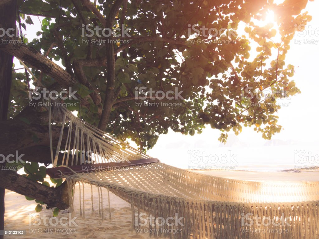 Empty hammock on the tropical beach with trees and beautiful sea view background. Vacation and travel concept. – zdjęcie