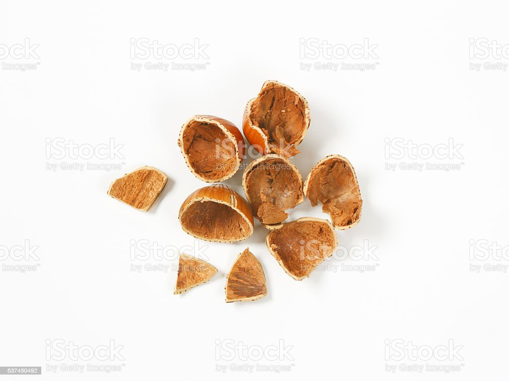 empty hazelnut shells stock photo
