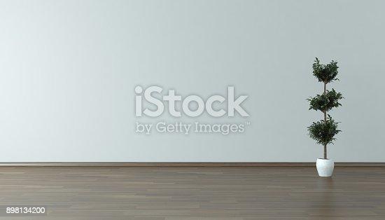 629801250istockphoto Empty Home Interior Background With Plant 898134200