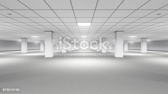 istock Empty Large Room With Carpet Floor 675010130