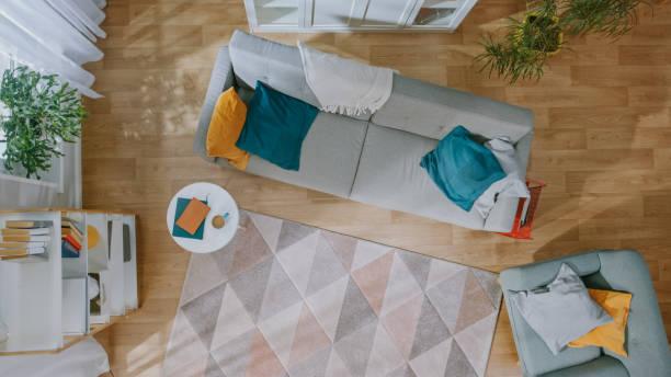 誰もいない空きリビングルーム。カーペット付きのモダンなインテリア、青と黄色の枕付きのグレーのソファ、椅子、コーヒーテーブル、本付きの棚、緑の植物、木製の床。トップビュー。 - ソファ 無人 ストックフォトと画像