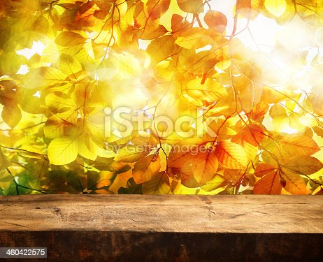 istock Empty log table in front of the yellow leaves of a tree 460422575