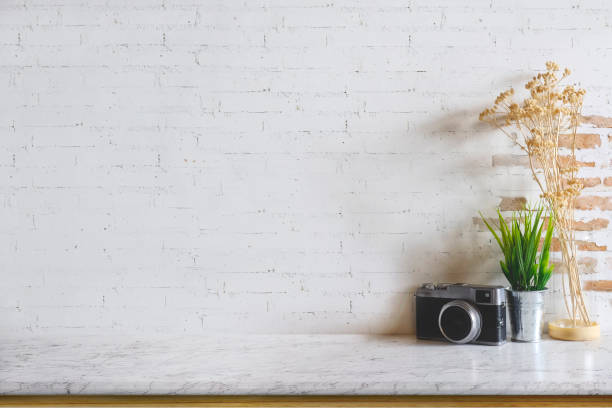 1 180 Brick Wall Plant White Backgrounds Stock Photos Pictures Royalty Free Images Istock