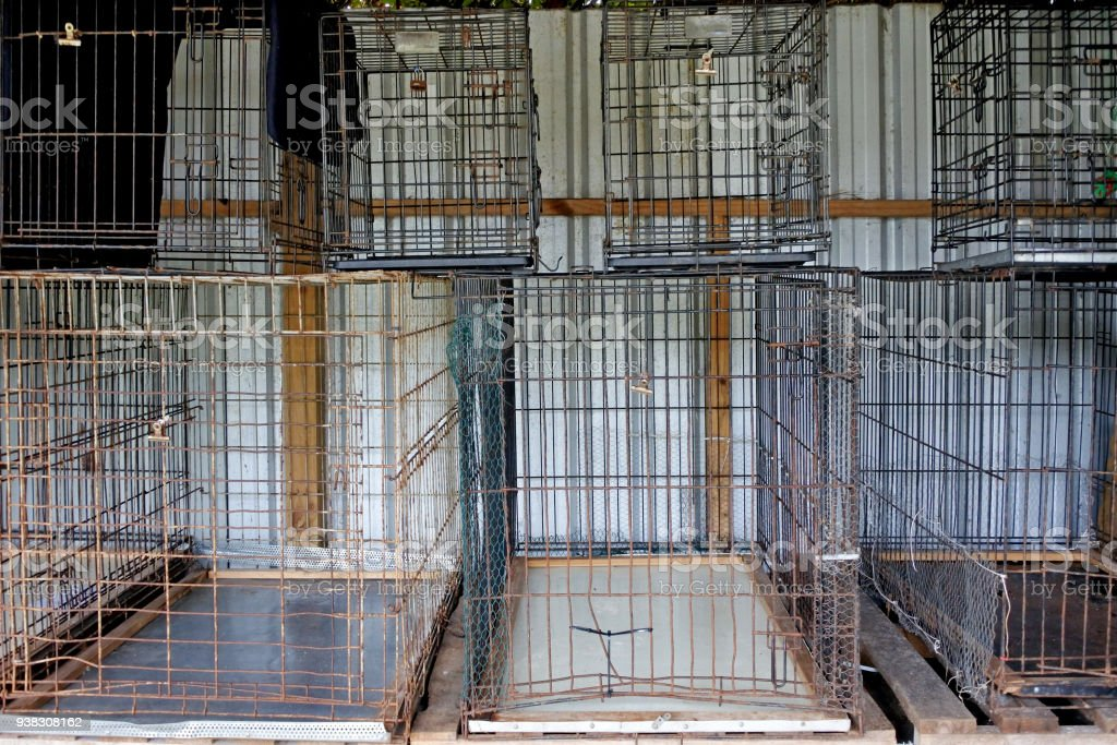 Empty metal cages in animal shelter stock photo