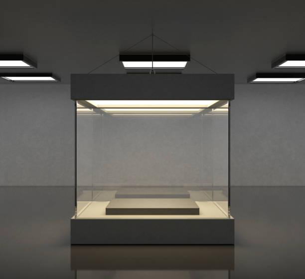 empty modern gallery space with bright showcase - espositore per negozio foto e immagini stock