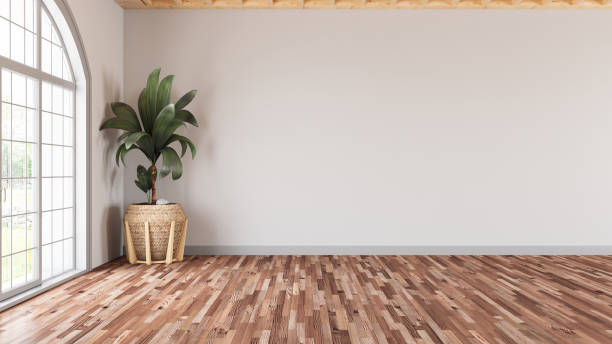 Empty Modern Living Room with White Wall and Plant stock photo