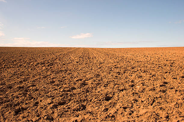 Empty muddy field of red soil Red dry earth of a ploughed field. horizon over land stock pictures, royalty-free photos & images