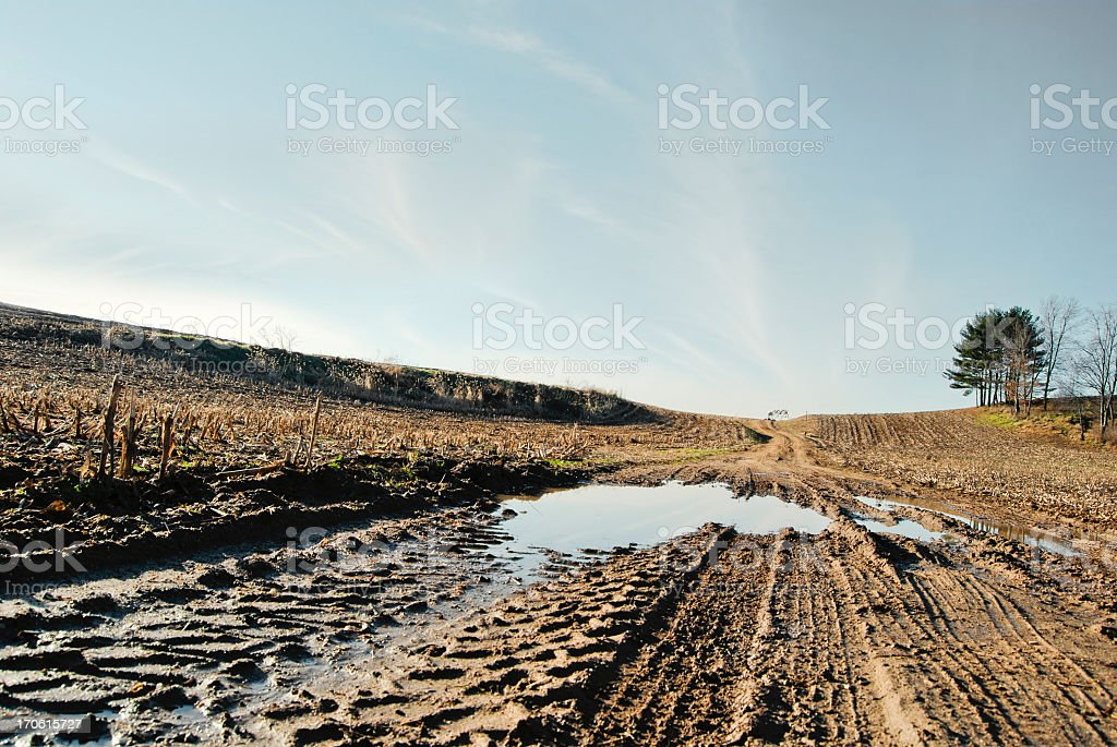 Empty muddy soil after the harvest royalty-free stock photo
