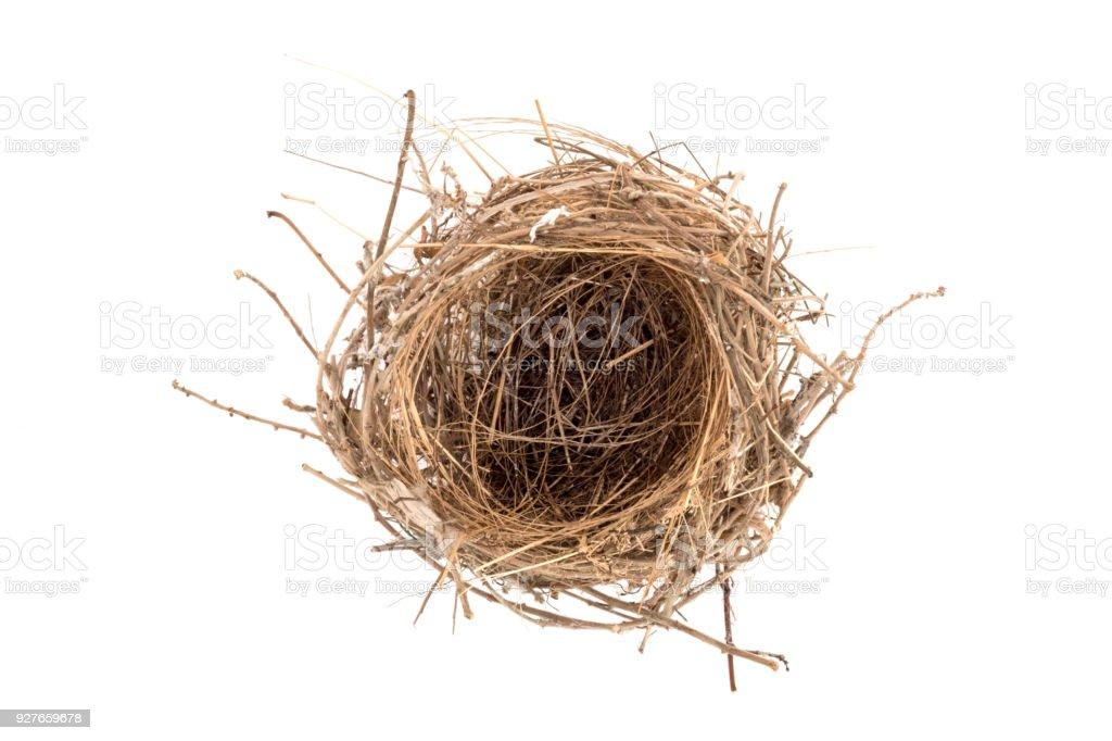 Empty Nest on White Background. stock photo