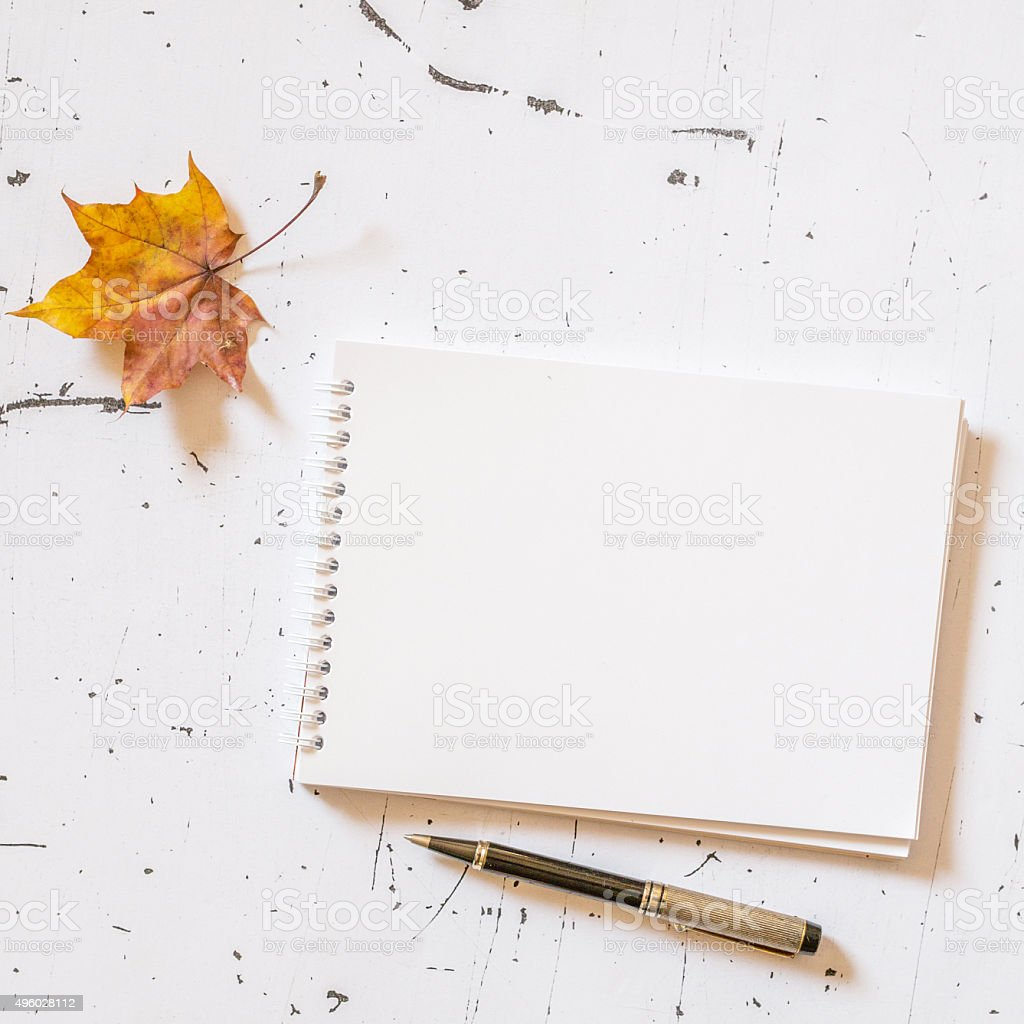 Empty notebook with pen stock photo