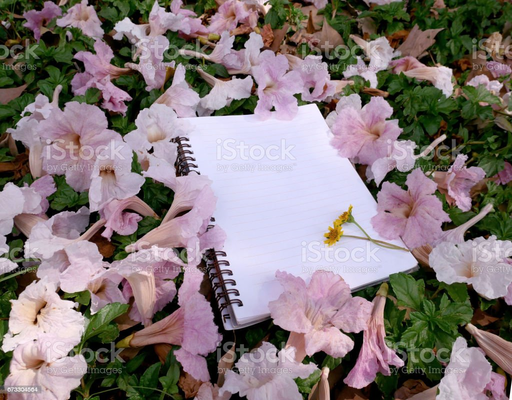 Empty notebook with pink flower royalty-free stock photo