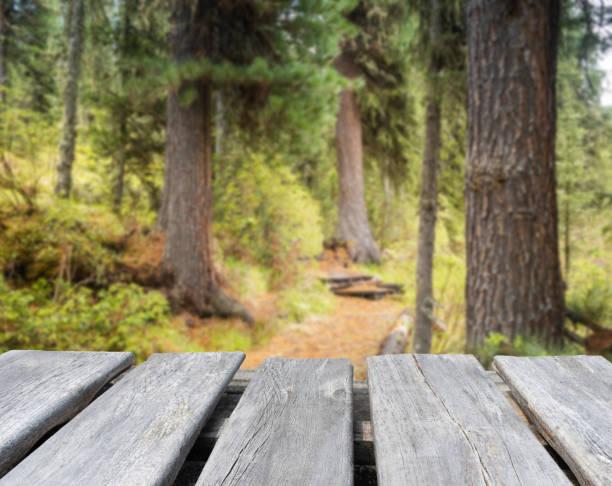 mesa de madera vieja vacía en el fondo borroso del bosque - foto de stock