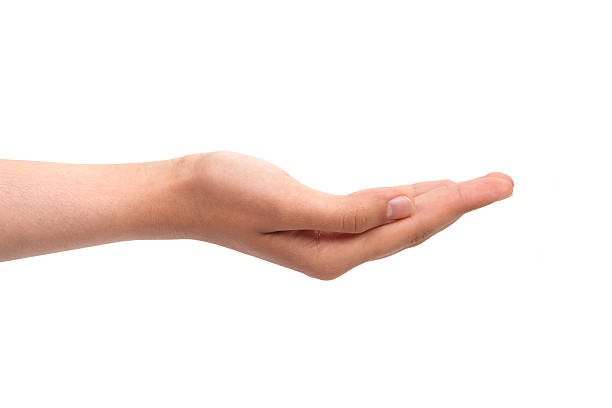 Empty open hand One Hand Open hands cupped stock pictures, royalty-free photos & images