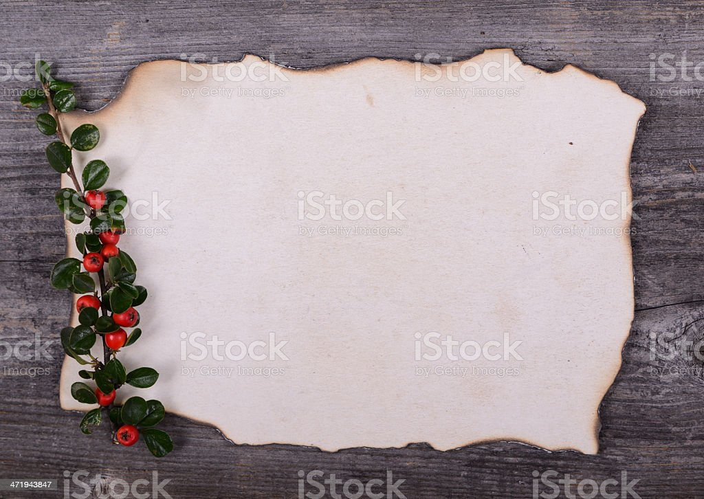 Empty paper note for Santa Claus with red berries stock photo