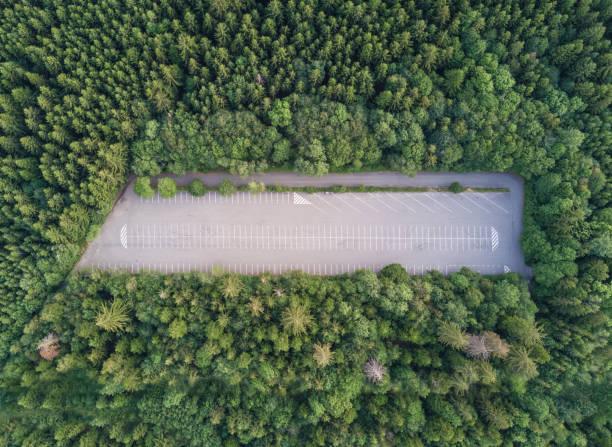Leeren Parkplatz im Wald – Foto