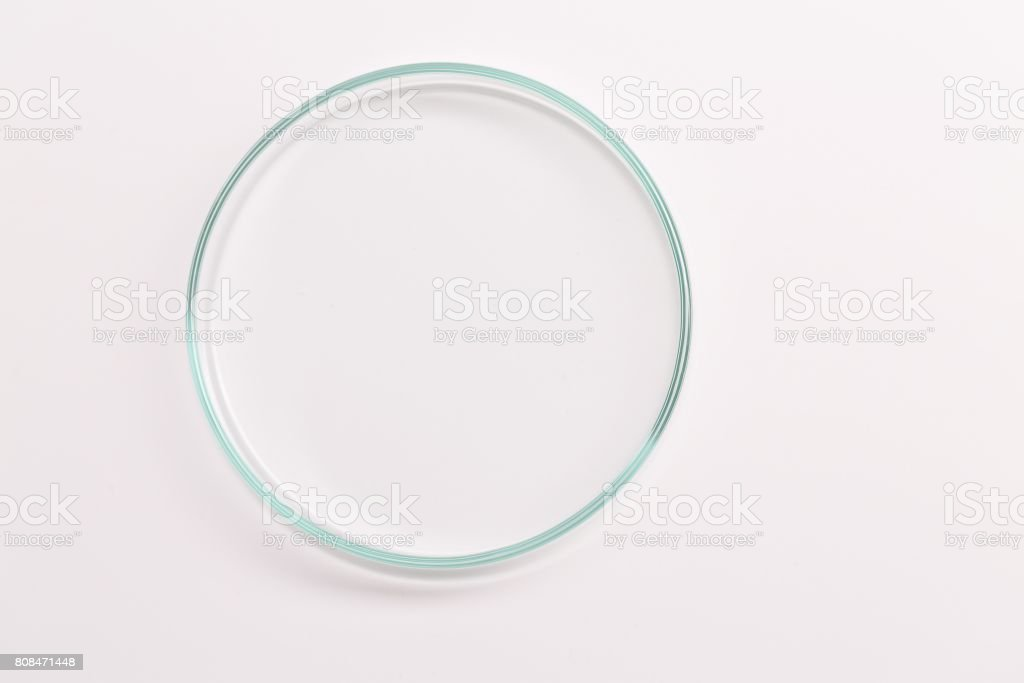 Empty petri dish for growing cultures of microorganisms , fungi stock photo