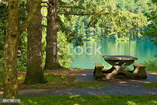 Park setting with Fir trees and picnic table over fantastic mountain view.