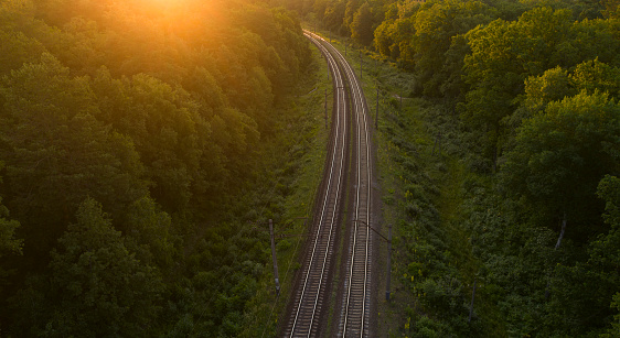 Empty railway track in the forest at sunset or dawn.