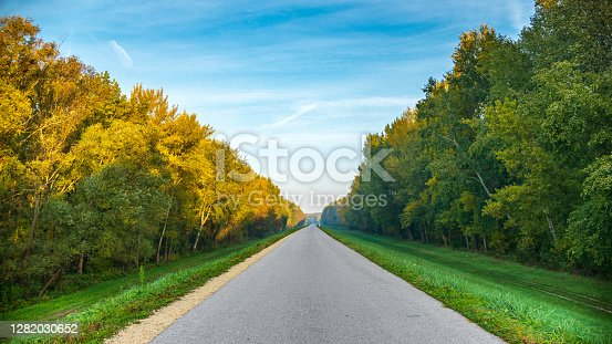 Never ending asphalt road in the scenic autumn forest. Lush green foliage and blue sky. Wallpaper.
